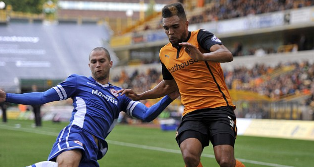 Wolves 1 Cardiff City 0