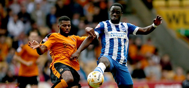 Brighton & Hove Albion Vs Wolves Preview