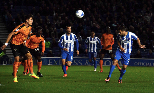 Brighton & Hove Albion 1 Wolves 0