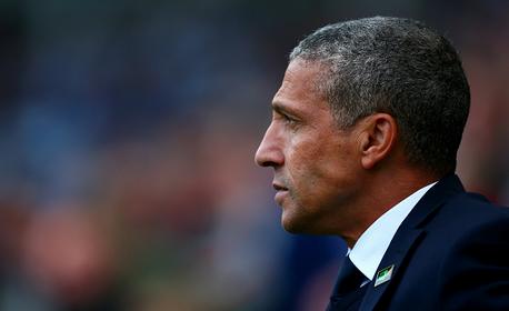 Brighton & Hove Albion Vs Wolves Preview