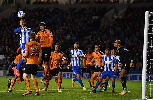 Wolves Vs Brighton & Hove Albion Preview