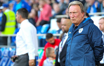 Wolves Vs Cardiff City Preview